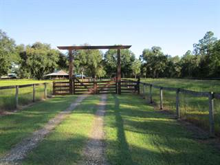 Farm And Agriculture for sale in 12920 NE Hwy 316, Fort Mc Coy, FL, 32134