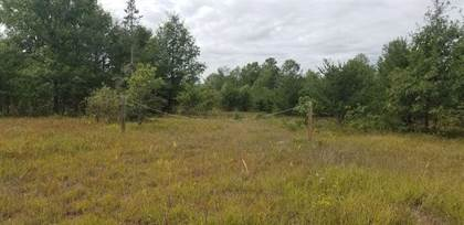 Lots And Land for sale in Leline 40 ACRES, Roscommon, MI, 48653