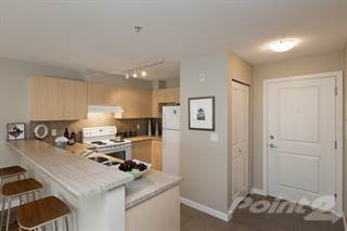 Apartment for rent in Village at Thunderbird Centre - One Bedroom + Den, Langley Township, British Columbia