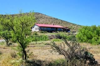 Single Family for sale in 22 Los Ranchos Estates, Alpine, TX, 79830