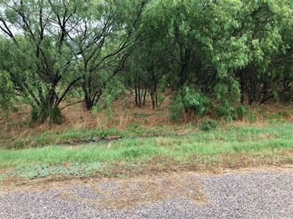 Lots And Land for sale in 22219 Prairie Dr & Grassy Lane, Whitney, TX, 76692