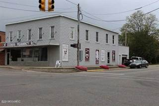Comm/Ind for sale in 1598 S Main Street, Martin, MI, 49070