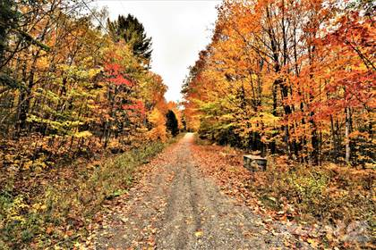 Residential Property for sale in Chemin de Chertsey, Chertsey, Quebec, J0K3K0