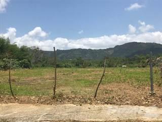Land for sale in Bo. Rincon , Gurabo, PR, 00778