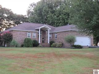Single Family for sale in 65 SHELBY LANE, Mayfield, KY, 42066