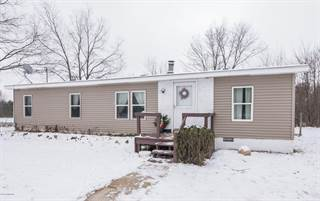Single Family for sale in 17719 Mill Site Road, Hersey, MI, 49639