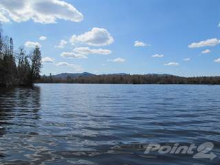 Farm And Agriculture for sale in Airstrip Rd, Indian Lake, NY, 12842