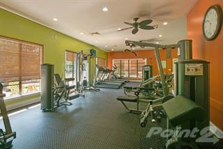 Apartment for rent in Sundance at Clermont - Desert Aster, Clermont City, FL, 34711