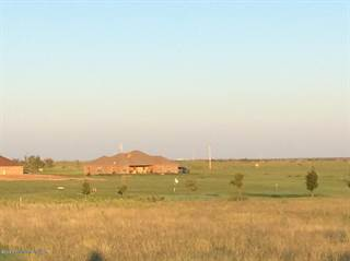 Single Family for sale in 7451 EASTERN ST, Greater Amarillo, TX, 79118