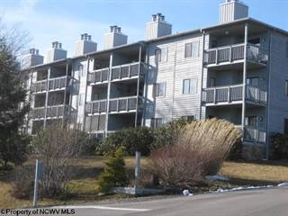 Condo for sale in 123 Ash lodge Court, Davis, WV, 26260