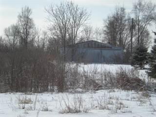 Land for sale in 0 Carmody Road, Coloma, MI, 49038