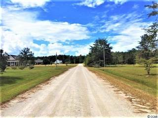Land for sale south carolina sc vacant lots for sale in south 139 acres holcombe ln greater aynor sc freerunsca Gallery