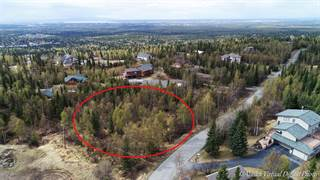 Land for sale in 000 Conifer Street, Anchorage, AK, 99507