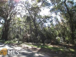 Farm And Agriculture for sale in 1196 New River Rd, Darien, GA, 31305