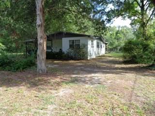 Single Family for sale in 1031 THIRD AVE, Trenton, FL, 32693