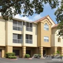 Apartment for rent in Promenade at Carillon, St. Petersburg, FL, 33716