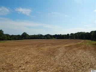 Farm And Agriculture for sale in Vl SPRINGBROOK RD, Jackson, MI, 49201