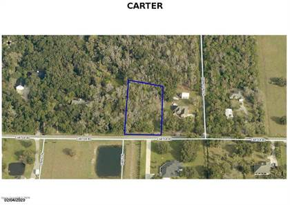 Farm And Agriculture for sale in 000 Carter Road, Mims, FL, 32754