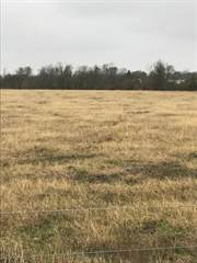 Other Real Estate for sale in 0 Mixville Rd Road, Sealy, TX, 77474