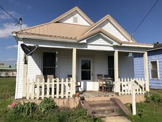 Single Family for sale in 513 E 9th Street, Metropolis, IL, 62960
