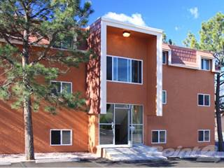Apartment for rent in Wind River Place Apartments - 1x1A, Colorado Springs, CO, 80904