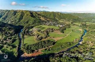 Farm And Agriculture for sale in Puerto Rico, Morovis, PR, 00687