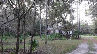 Single Family for sale in 12622 HAYES CLAN ROAD, Riverview, FL, 33579