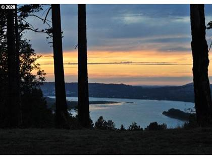 Lots And Land for sale in 0 NE CHAMBERLAIN RD, Corbett, OR, 97019