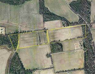 Farm And Agriculture for sale in TBD Will Johnson Rd., Nichols, SC, 29581