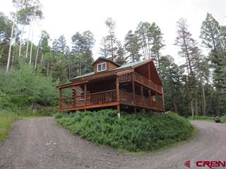 Single Family for sale in 1407 Clark Mountain Lane, Antonito, CO, 81120
