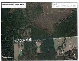 Land for sale in 05 County Road 328 Magnolia Springs, Kirbyville, TX, 75956