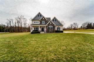 Single Family for sale in 138 Filly Lane, Bruceton Mills, WV, 26525