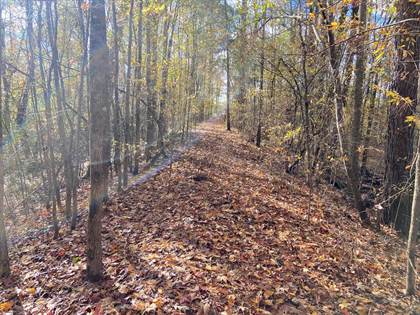 Lots And Land for sale in 0 snyder lane, Fayette, MS, 39069
