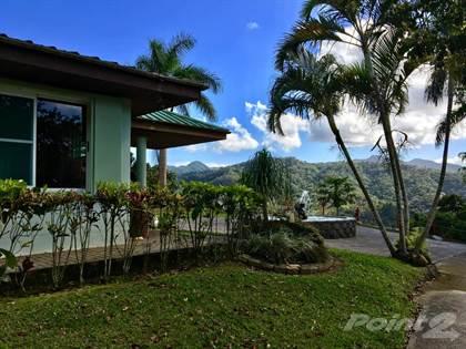 Coffee estate ranch vistas yahuecas adjuntas adjuntas for Dulce coffee studio