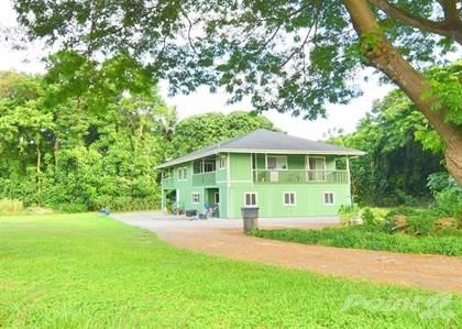 Single-Family Home for sale in 5691-A HAUAALA RD Unit B Green House #2, Kapaa, HI, 96746