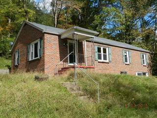 Single Family for sale in 1783 BEARHOLE ROAD, Pineville, WV, 24874