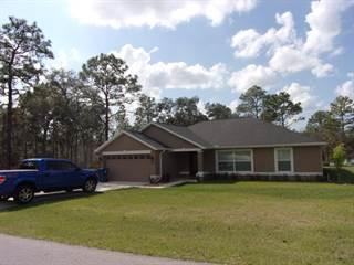 Single Family for sale in 12415 Neeld Street, Annutteliga Hammock, FL, 34614