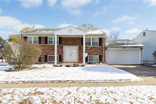 Single Family for sale in 135 Brower Drive, Florissant, MO, 63031