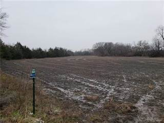 Farm And Agriculture for sale in 170th Street, Fort Scott, KS, 66701