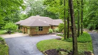 Single Family for rent in 3145 FOXFIRE Drive, Milford, MI, 48380