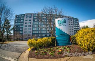 Apartment for rent in 8600 Apartments, Silver Spring, MD, 20910