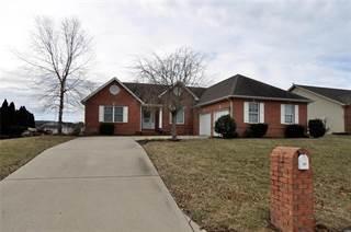 Single Family for sale in 117 Gladwyn Drive, Millstadt, IL, 62260