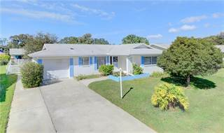 Single Family for sale in 1479 DUNDEE DRIVE, Palm Harbor, FL, 34684