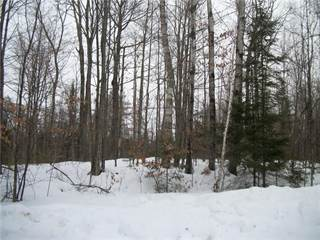 Land for sale in Lot 11, 12 Allison Place, Birchwood, WI, 54817