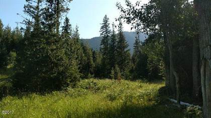 Lots And Land for sale in 19 Country Road, Noxon, MT, 59853