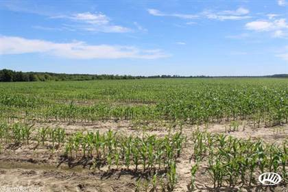 Farm And Agriculture for sale in No address available, Wynne, AR, 72396