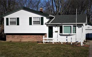 Single Family for sale in 13766 Franklyn Blvd, Brook Park, OH, 44142
