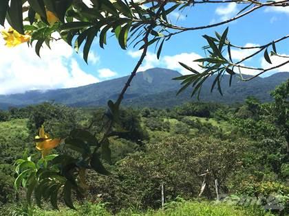 Farm And Agriculture for sale in Mountain Breezes, Rincon de la Vieja, Guanacaste
