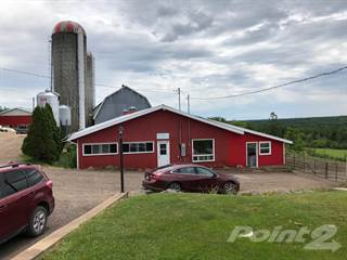Farm And Agriculture for sale in 99 & 54 MacKichan Lane, Cleveland, Nova Scotia