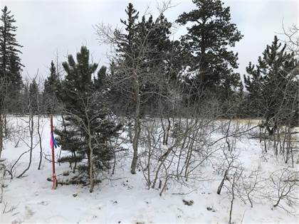 Lots And Land for sale in 2069 WARRIOR CIRCLE, Como, CO, 80432